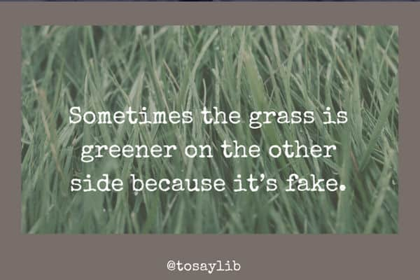 funny quote grass greener fake