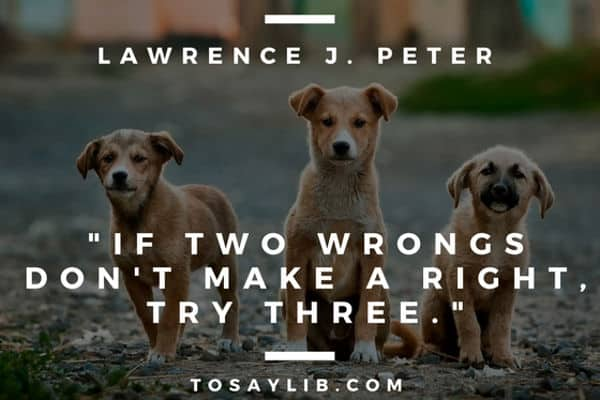 funny quote lawrence j peter two wrong try three
