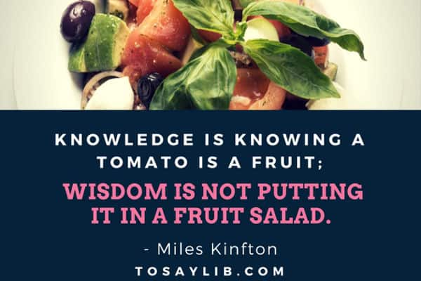 funny quote miles kinfton tomato salad knowledge wisdom