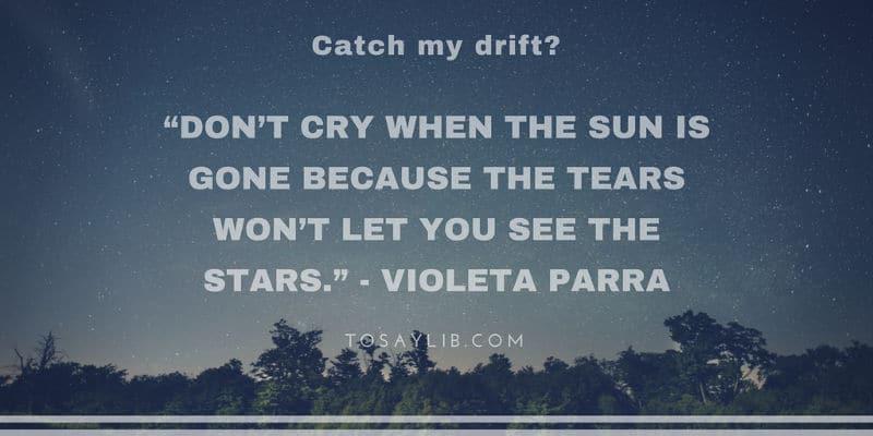 breakup quote violeta parra