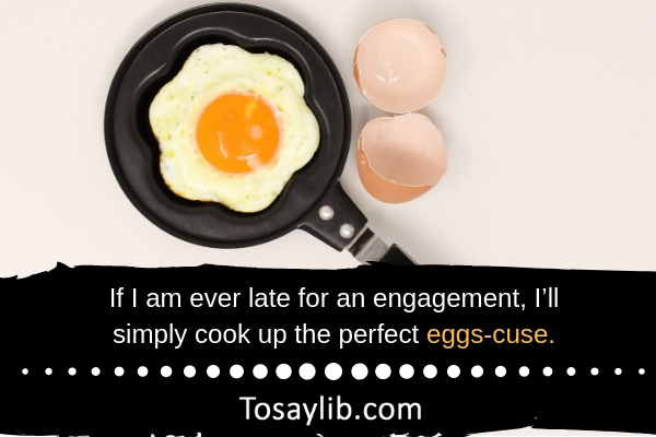 Chicken Egg Quote: 35 Funny Egg Quotes And Jokes