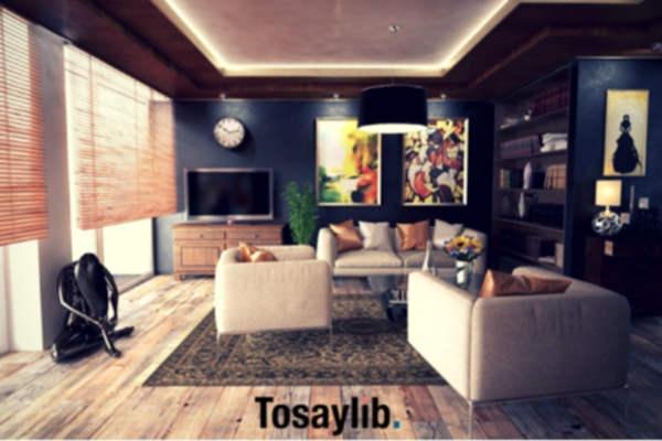 cozy apartment architecture art books sofa