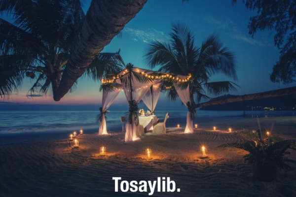 white canopy tent with candles around it near coastline coconut trees