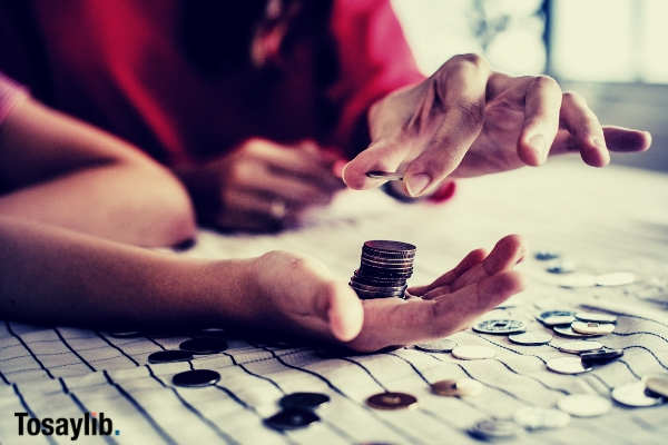 person holding coins counting money