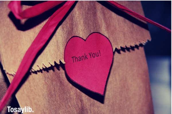 10 Great Internship Thank You Letter Templates - Tosaylib