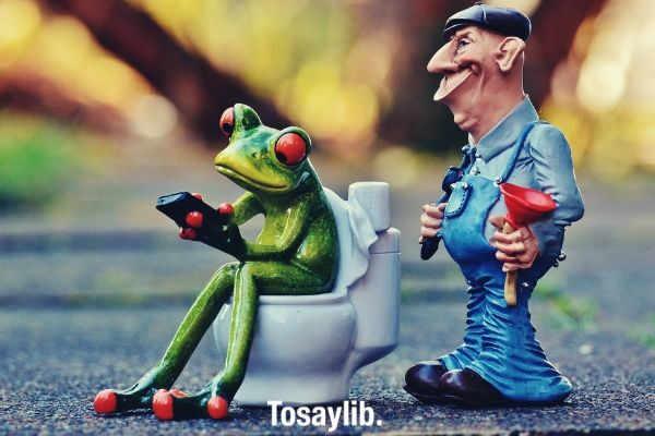 plumber frog loo pîmpel repair