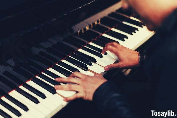 pianist music musical musician