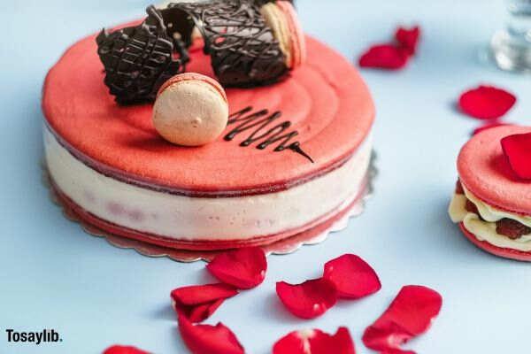 big_macaroon_cake_pink