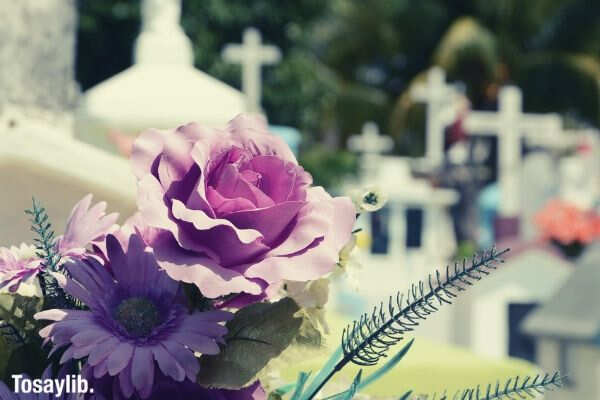 cementerio flor cemetery death purple flowers
