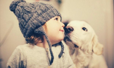 winter-portrait-baby-beanie-white-dog
