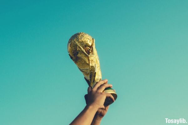 world cup throphy raised