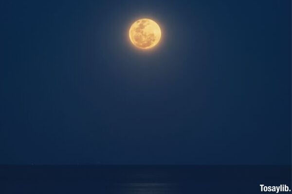 moon photo reflection sea night