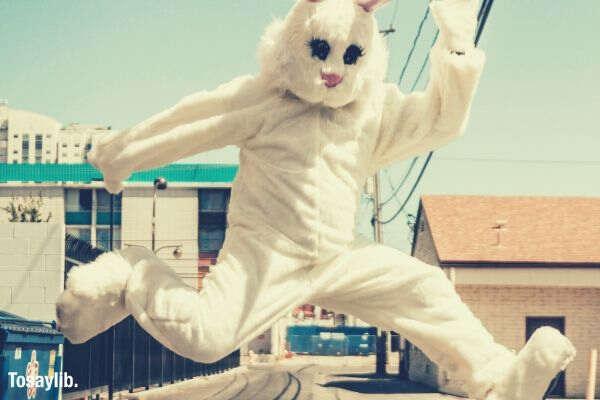 mascot rabbit jumping sky