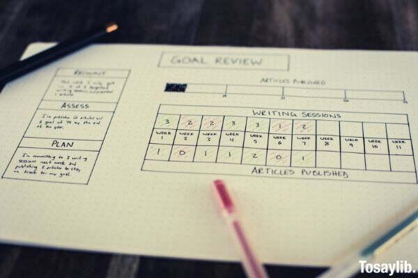 goals goal review paper written