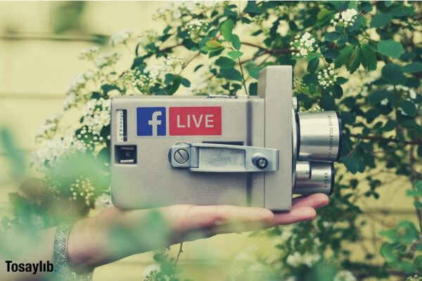 04 Hand video camera plants