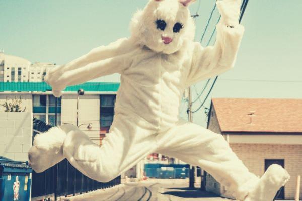 feature-mascot-rabbit-jumping-sky