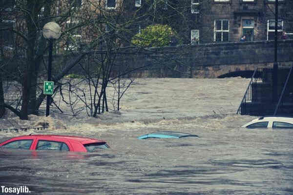 flood cars photo