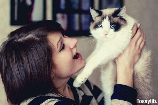 woman playing with cat photo