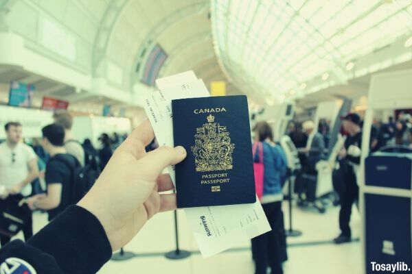 person holding canda Passport