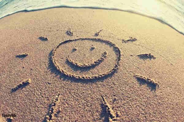 sun on the sand sea shore
