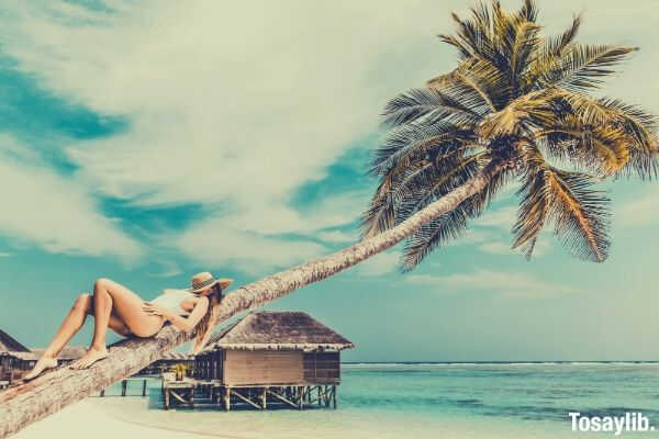 woman lying on the coconut tree