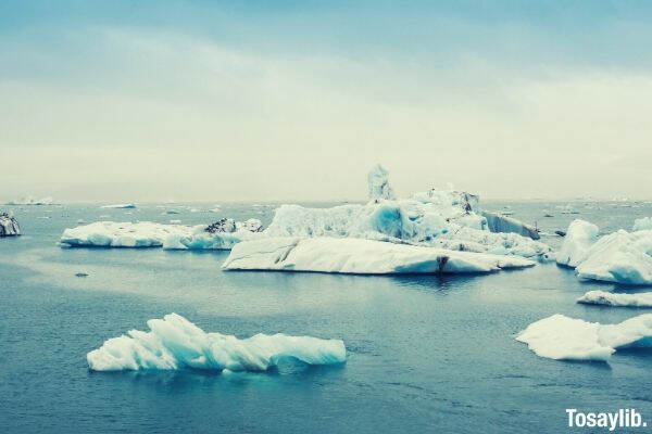 icebergs on top of water