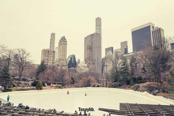02 city building cityscape