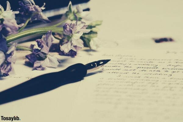 02 purple flowers fountain pen