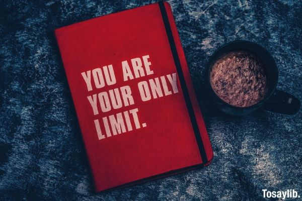 you are your only limit book