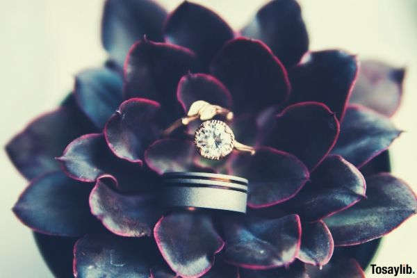 gold colored ring in the middle of flower