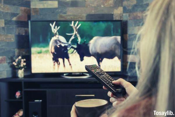 girl is watching tv dears