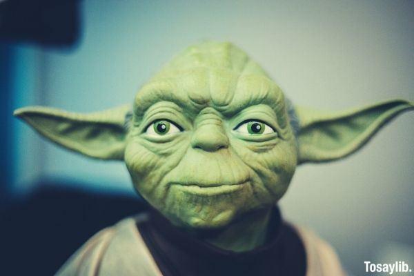master yoda action figure