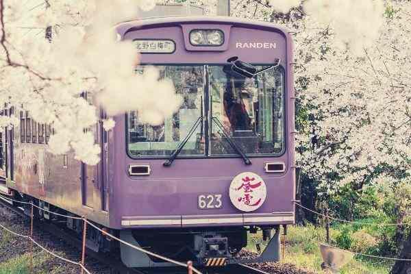purple-cable-tram