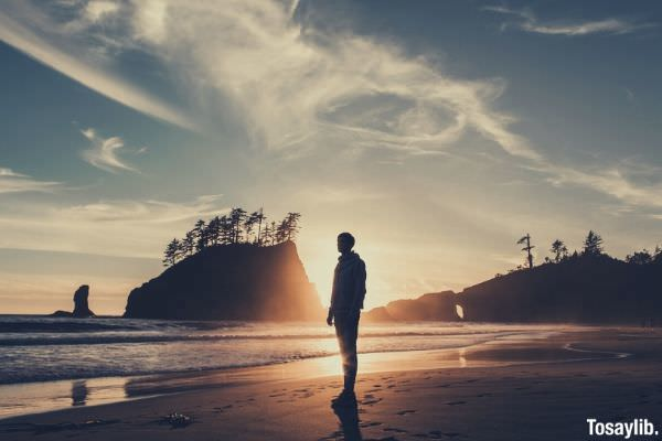 silhouette of man standing on beach during sunset trees water