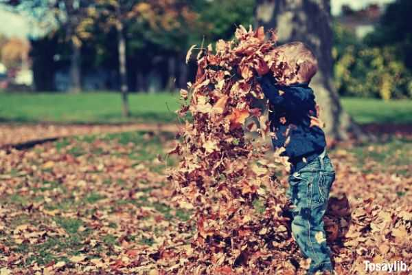 child playing with dried leaves in the backyard happy boy