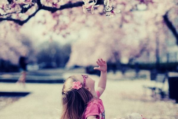 cute little girl on pink shirt and glasses under cherry blossom tree