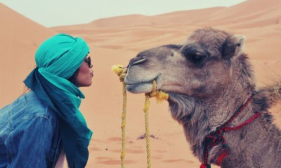 feature-woman-light-blue-turban-wednesday-camel-happy-hump-day