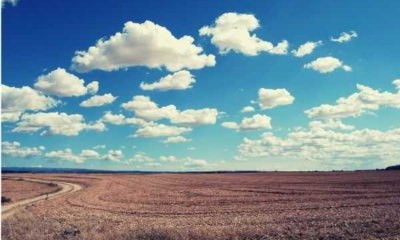 words-to-describe-sky-brown-field-and-blue-skies