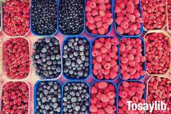flat lay photo of boxes of different kinds of berries