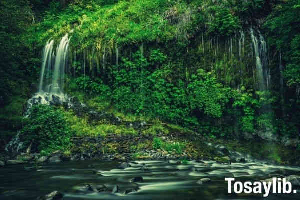 Photo of a multistep waterfalls green forest