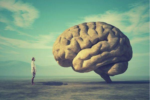 photo of man standing while looking at the large brain
