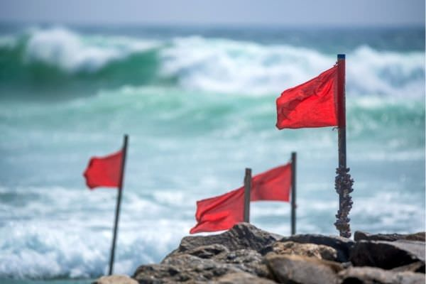 01 red warning flag on beach